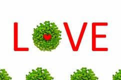 Valentinsgrußliebessymbol umgeben durch grüne Lilie Lizenzfreies Stockfoto
