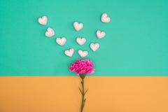 Valentinsgrußsüßigkeit mit Gartennelke auf grünem und orange Hintergrund Stockfotografie