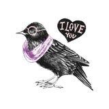 Valentinsgrußtageskarte mit Star und Herzen Stockfotografie