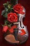 Valentinsgrußvioline mit roten Rosen Lizenzfreies Stockfoto