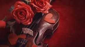 Valentinsgrußvioline mit roten Rosen Stockfotografie