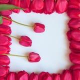 Valentinsgruß-oder Mutter-Tagesrahmen - Fotos auf Lager Lizenzfreies Stockbild