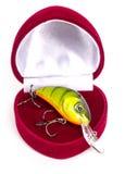 Valentinsgrußtagesfischenüberraschungsgeschenk Stockfotografie