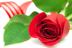 Valentinstag Stockfotografie