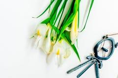 Valentinstag, Blumen für Damen und Schmuck lizenzfreie stockfotografie