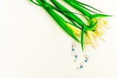 Valentinstag, Blumen für Damen und Schmuck stockbild