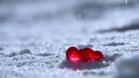 Valentinstag 2 Rote Herzen auf dem weißen Schnee unter einem Eisregen stock footage