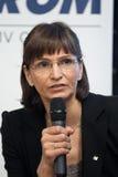 Valeria Racila-Packwagen Groningen Lizenzfreies Stockfoto