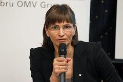 Valeria Racila-Packwagen Groningen Lizenzfreie Stockfotografie