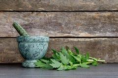 Valerian Herb Leaves com o almofariz e o pilão de mármore verdes fotos de stock