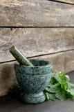 Valerian Herb Leaves fresco com o almofariz e o pilão de mármore verdes imagens de stock royalty free