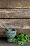 Valerian Herb Leaves fresco com o almofariz e o pilão de mármore verdes foto de stock royalty free