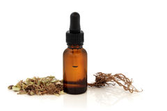 Valerian Root and Tincture Bottle Royalty Free Stock Photos