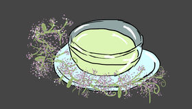 Valerian tea illustration. Valerian tea on gray background, illustration Royalty Free Stock Image
