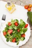 Valerianella con i pomodori Immagine Stock Libera da Diritti