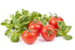 Valerianella locusta, valerianella, pomodoro ciliegia, valerianella fotografie stock libere da diritti