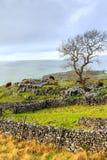Vales de Yorkshire Imagem de Stock