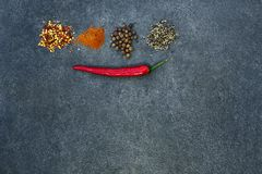 Valet av kryddor, herbsl på svart stenar tabellen Ingredienser f?r matlagning m?nga bakgrundsklimpmat meat mycket royaltyfria bilder