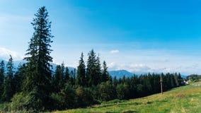 Valey Gasienicowa en montagnes de Tatra dans Zakopane Photo libre de droits
