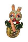 Valfri vegetarisk kanin - Royaltyfria Foton