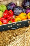 Valigia d'annata con le verdure organiche fresche Fotografie Stock Libere da Diritti