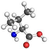 Valine molecule Stock Photography