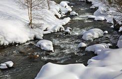 Valira d Orient  river in la Cortinada. Andorra Stock Image