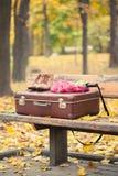 Valise, écharpe, bottes et parapluie sur le banc Photographie stock libre de droits