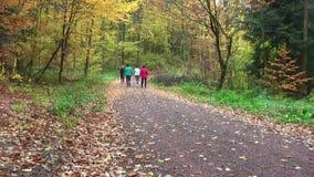 Valking nórdico outono 2018 Um grupo de mulheres está andando nas madeiras filme