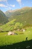 Vallée alpestre no.1 Images stock
