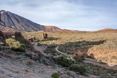 Vallée au pied du volcan de Teide et du volcan de Teide du côté gauche Image libre de droits