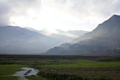 Vallée avec le regain au Vietnam Photographie stock libre de droits
