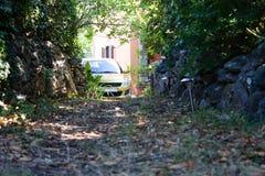 Vallée boisée verte avec la voiture à l'extrémité Image libre de droits