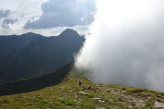 Vallée brumeuse en montagnes de Fagaras Image stock