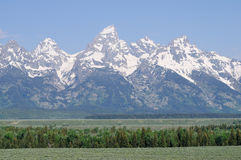 Vallée chez le Yellowstone Photo stock