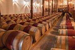 Vallée Chili de Colchagua de caverne d'établissement vinicole Images libres de droits