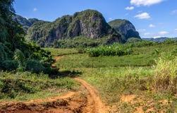 Vallée Cuba de Vinales Photographie stock libre de droits