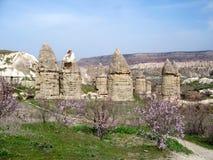 Vallée d'amour de Cappadocia au printemps Image libre de droits