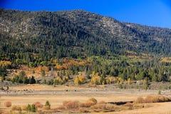 Vallée d'espoir, couleur d'automne Images stock