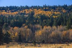 Vallée d'espoir, couleur d'automne Image stock