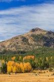 Vallée d'espoir, temps d'automne Photo stock