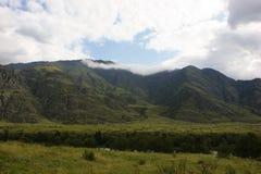 Vallée dans les montagnes d'Altai Images libres de droits