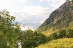 Vallée dans les montagnes d'Altai Photos stock