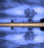 Vallée de brouillard Photos libres de droits