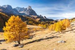 Vallée de Clarée pendant l'automne dans les Frances photographie stock libre de droits