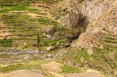 Vallée de Colca, Pérou Photo stock