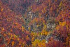 Vallée de couleurs Images libres de droits