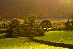 Vallée de Cumbrian photo libre de droits