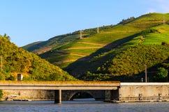 Vallée de Douro de rivière, Portugal Image libre de droits