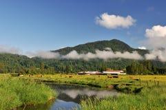 Vallée de Fraser au lever de soleil brumeux Photo libre de droits